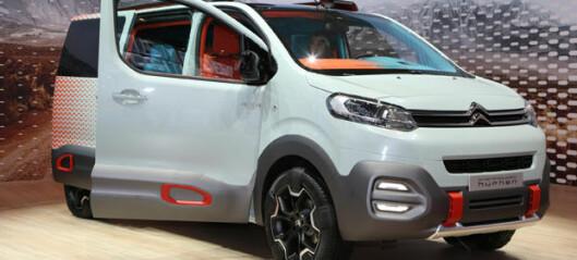 Fleksibel Citroën