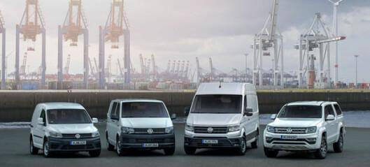 Godt år for VW-Nytte