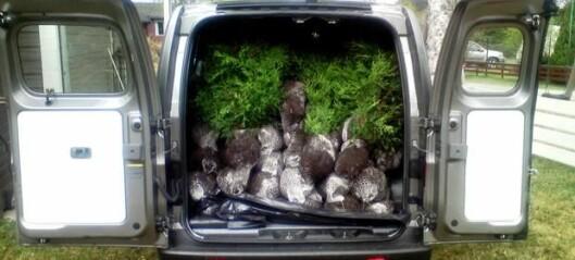 Nissans lille blomsterbil
